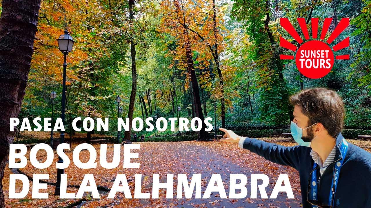 El bosque de la Alhambra en otoño con un guía de turismo explicando